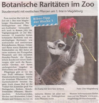 volksstimme_26_4_2012-Staudenmarkt_in_Vogelgesang_vorm_Zoo