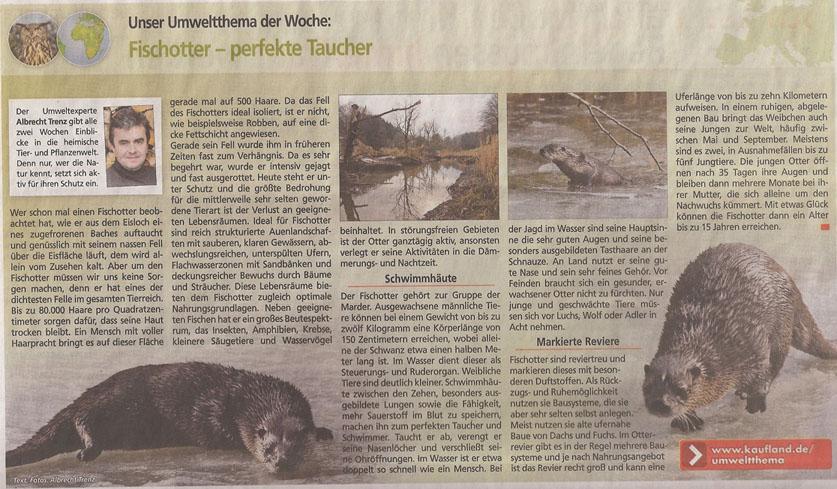 Fischotter_Kauflandzeitung_18_3_2013_kl