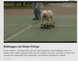 hund_kl