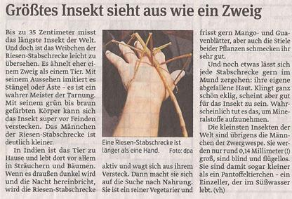 insekt_11_2_2013_volksstimme_kl