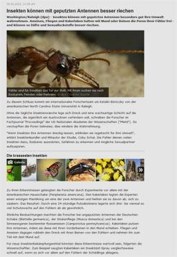 insekten_kl