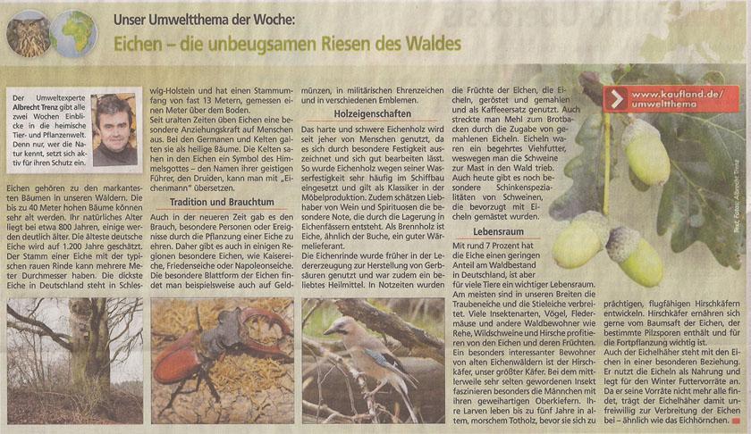 kaefer_kauflandzeitung_4_2_2013_kl