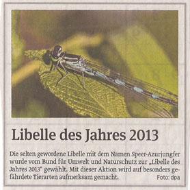 libelle_volksstimme_7_1_2013_kl