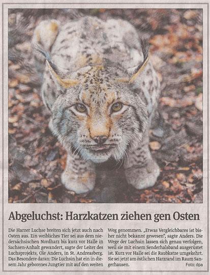luchs_24_12_2012_volksstimme_kl