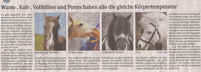 pony_8_3_2013_volksstimme_kl