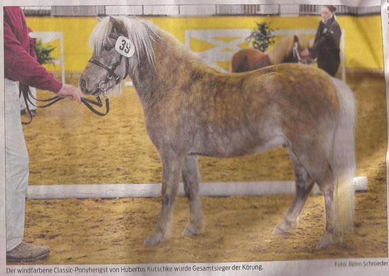 pony_9_2_2013_volksstimme_kl