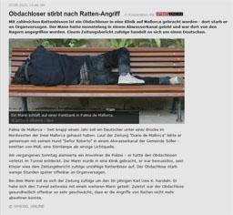 ratte_kl