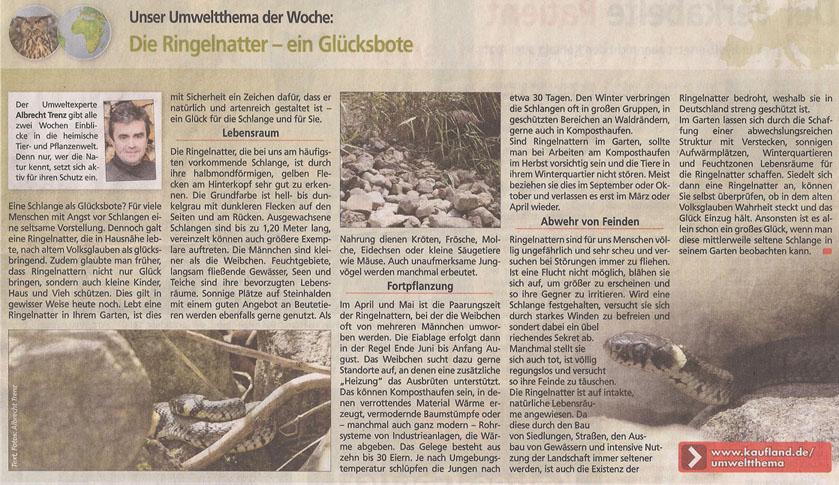 schlangen_kauflandzeitung_7_1_2013_kl
