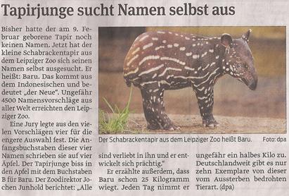 tapir_3_4_2013_volksstimme_kl