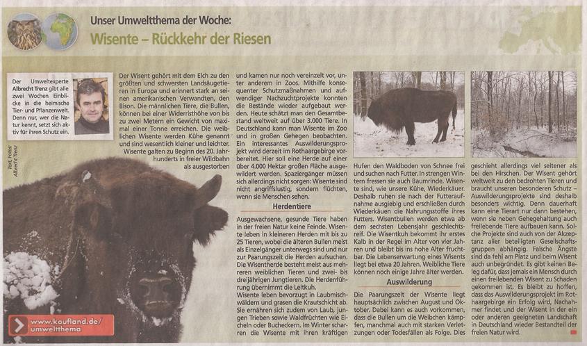 wisent_Kauflandzeitung_4_3_2013_kl
