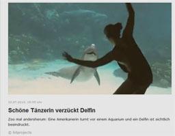 delfin_kl