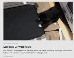 katz_kl