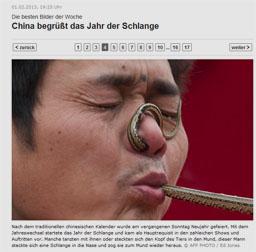 schlange_kl