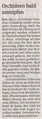 Orchideen_22_3_2013_volksstimme_kl