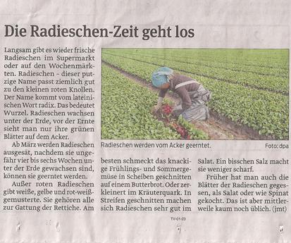 Radieschen_5_4_2013_volksstimme_kl