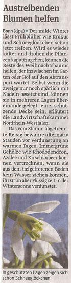 fruehling_schneegloeckchen_11_1_2013_volksstimme_kl