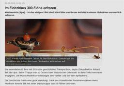 flohzirkus_kl