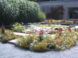 botanischer_garten1.jpg