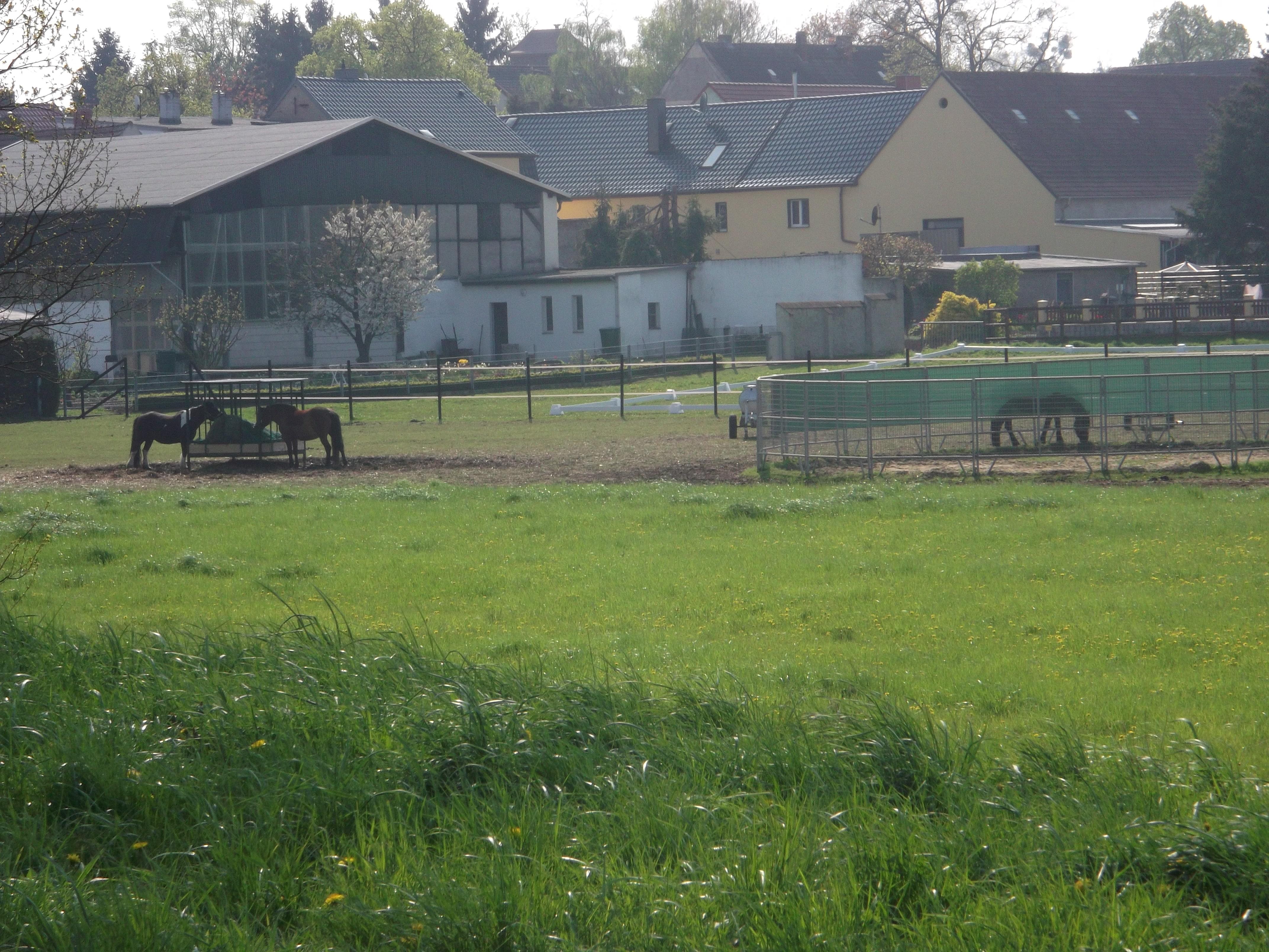 Neu Beton Gießen Deko Ideen