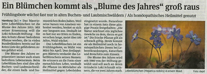 blume_des_Jahres_17_10_2012_volksstimme_kleiner.jpg
