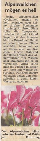 alpenveilchen_17_2_2013_generalanzeiger_kl