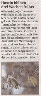 fruehling_hasel_9_1_2013_volksstimme_kl
